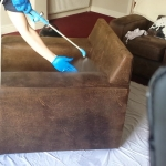 Professional Upholstery Cleaning - 2