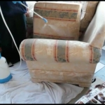 Professional Upholstery Cleaning - HWE-2